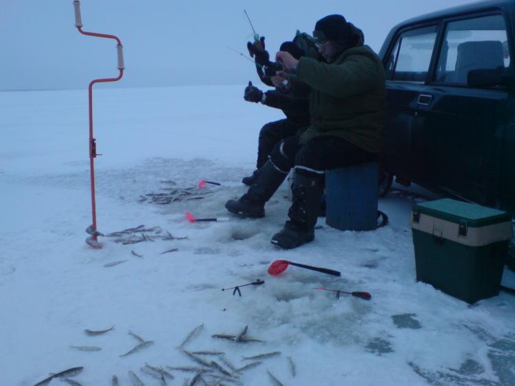 рыбалка на севере форум 2016 кянда